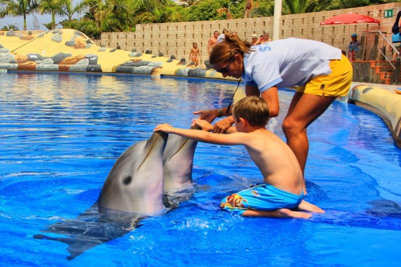Фото дельфинария Акваленд на Тенерифе