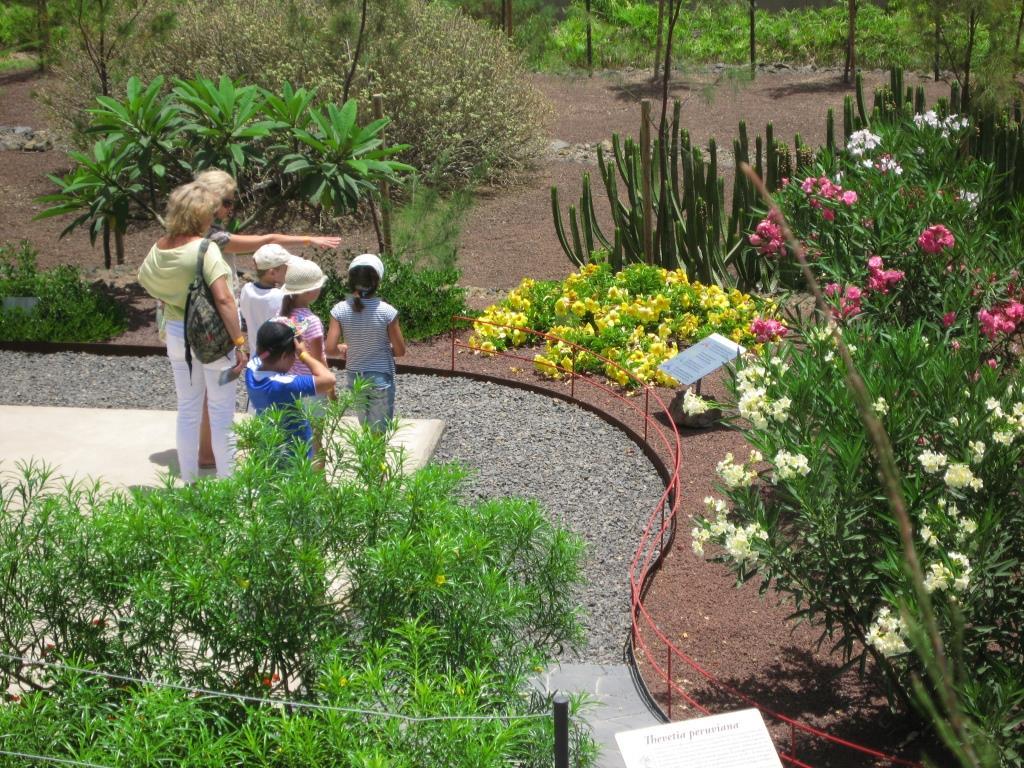 Маршруты в ботаническом саду Гуимар на Тенерифе, Канарские острова