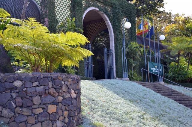 Botanical garden tenerife - Botanical garden puerto de la cruz ...